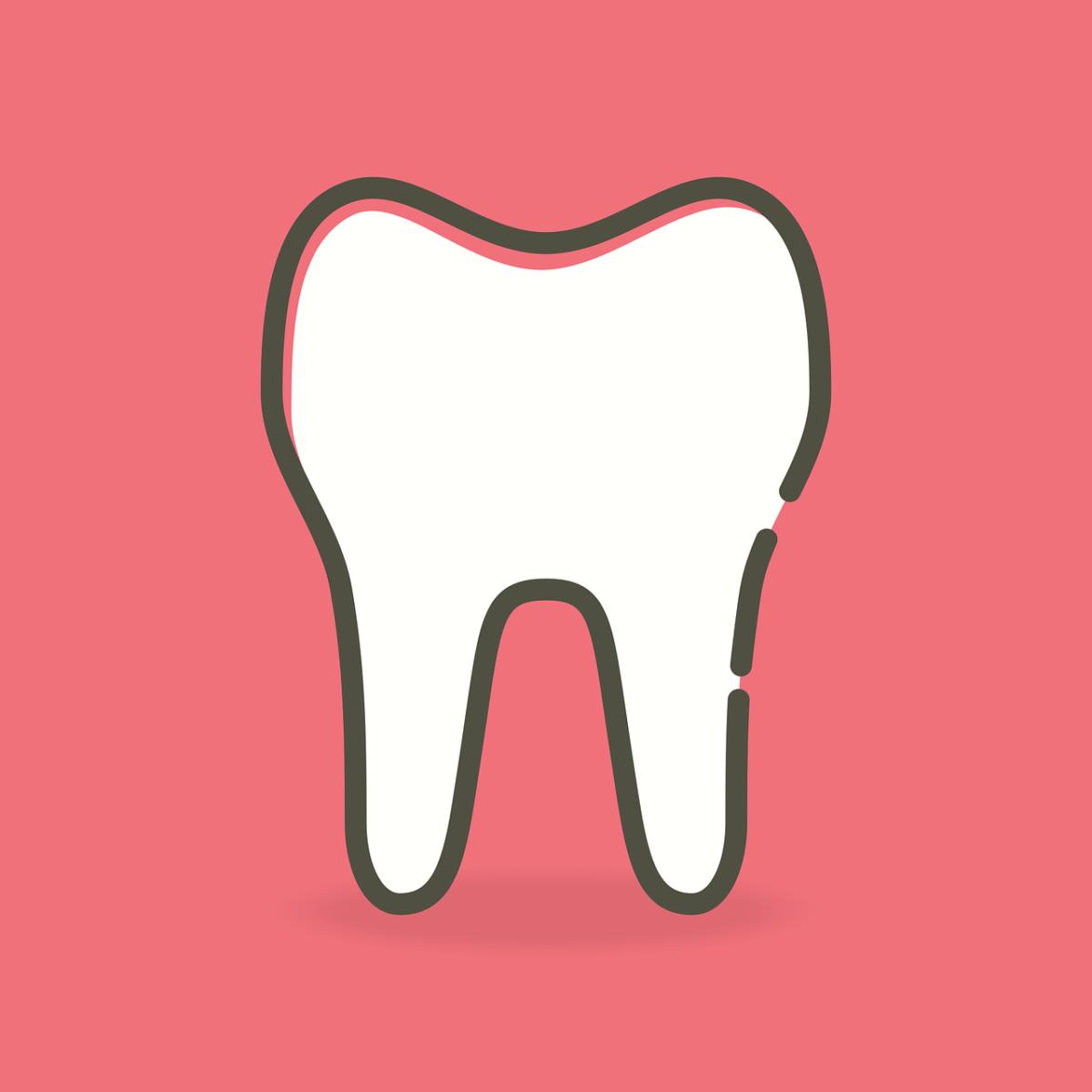 Piękne nienaganne zęby również wspaniały prześliczny uśmieszek to powód do dumy.